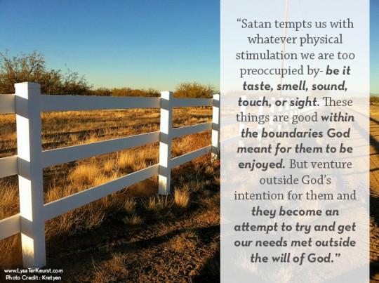 """Satan's Plan"" www.lysaterkeurst.com"
